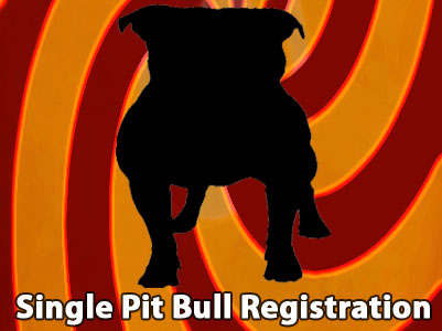 APBR PitBull single PitBull registration