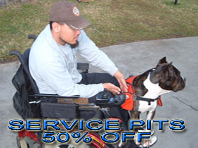 PitBull service dog discount registration